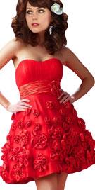 Floral Mini Valentines Dress