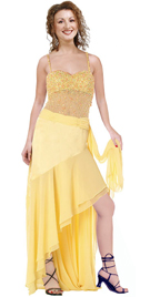 Chiffon and Net makes This Dress Simply Ravishing