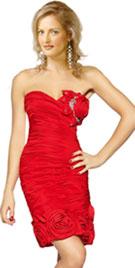 Rosette New Year Dress 2012